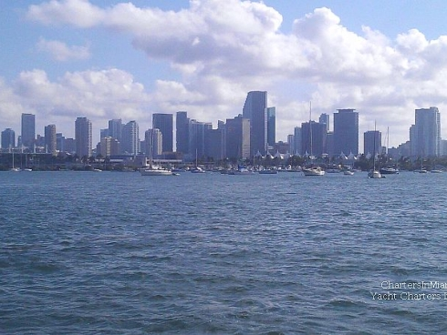 Miami Downtown view from Yacht Charter